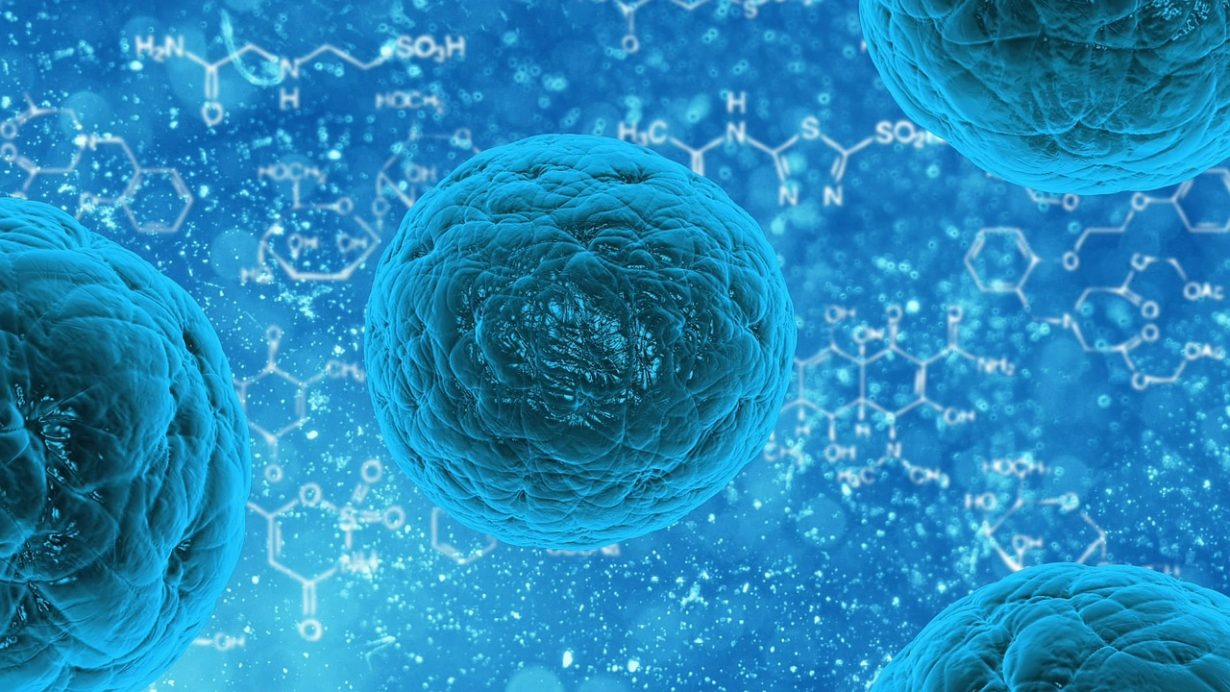 close up of a blue cell with blue background