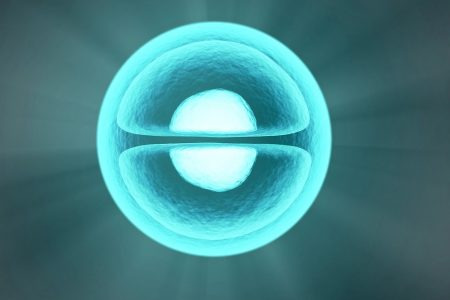 close up of a single cell colored blue