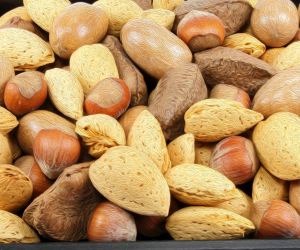 close up of various tree nuts