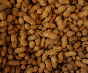 bunch of peanuts in their shells