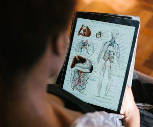 woman looking at a photo of human anatomy