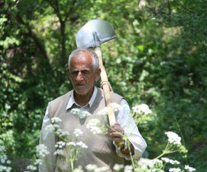 man carrying shovel through a garden