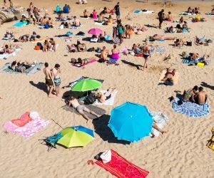 people sunbathing on beach