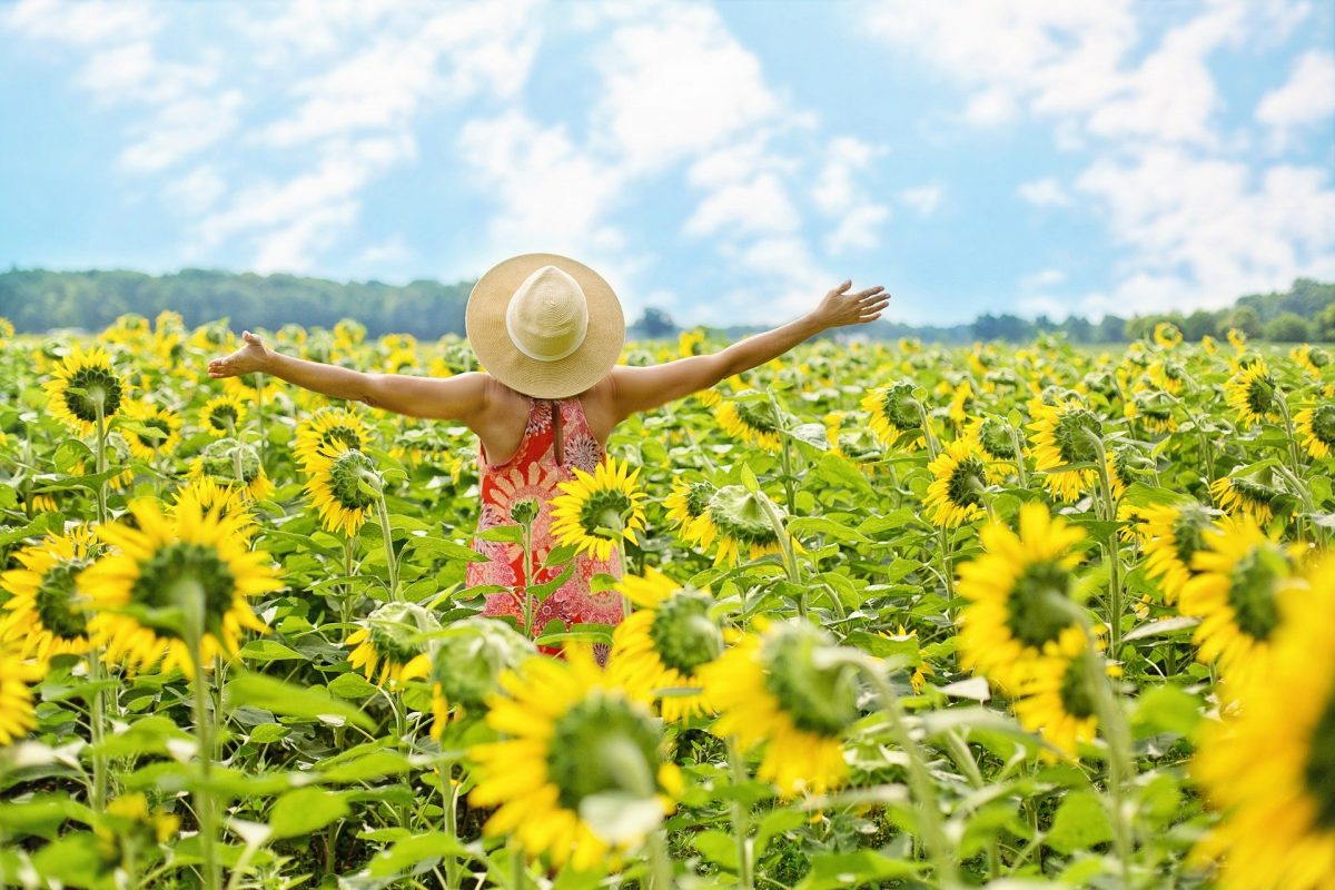 woman standing with outstretched arms in a sunflower field