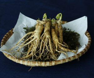 Ginseng root on a plate