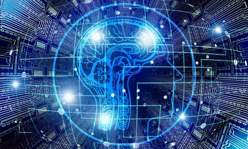 Digital image of human head and brain