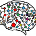 illustration of a brain and neural networks