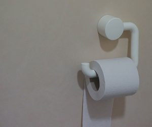 toilet paper on a toilet paper holder