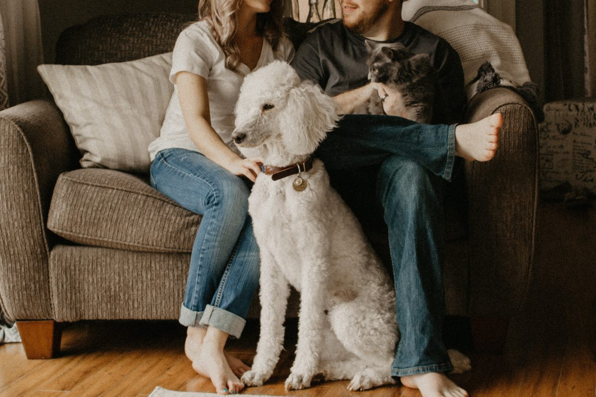 man and woman with their pets