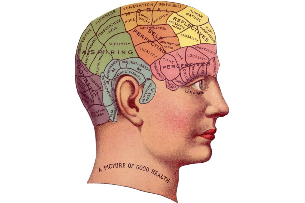 vintage brain head picture