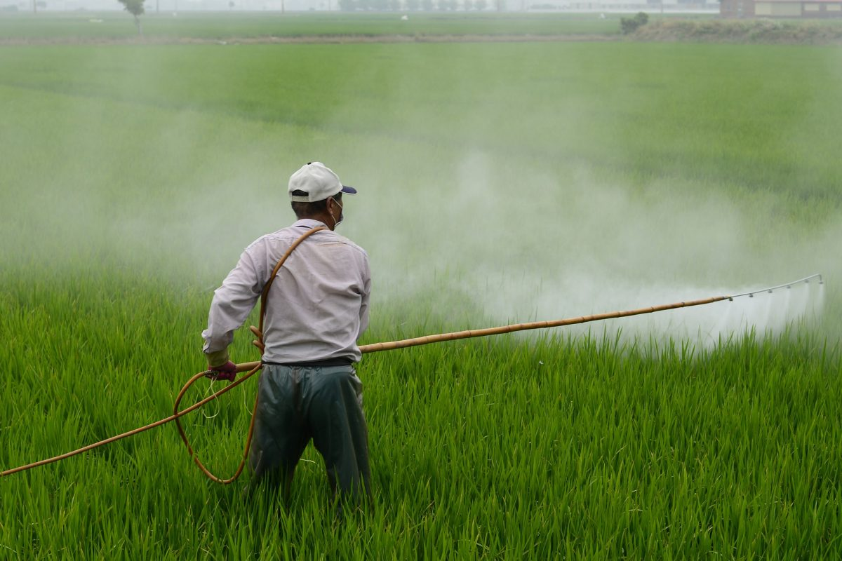 spraying crops with pesticide