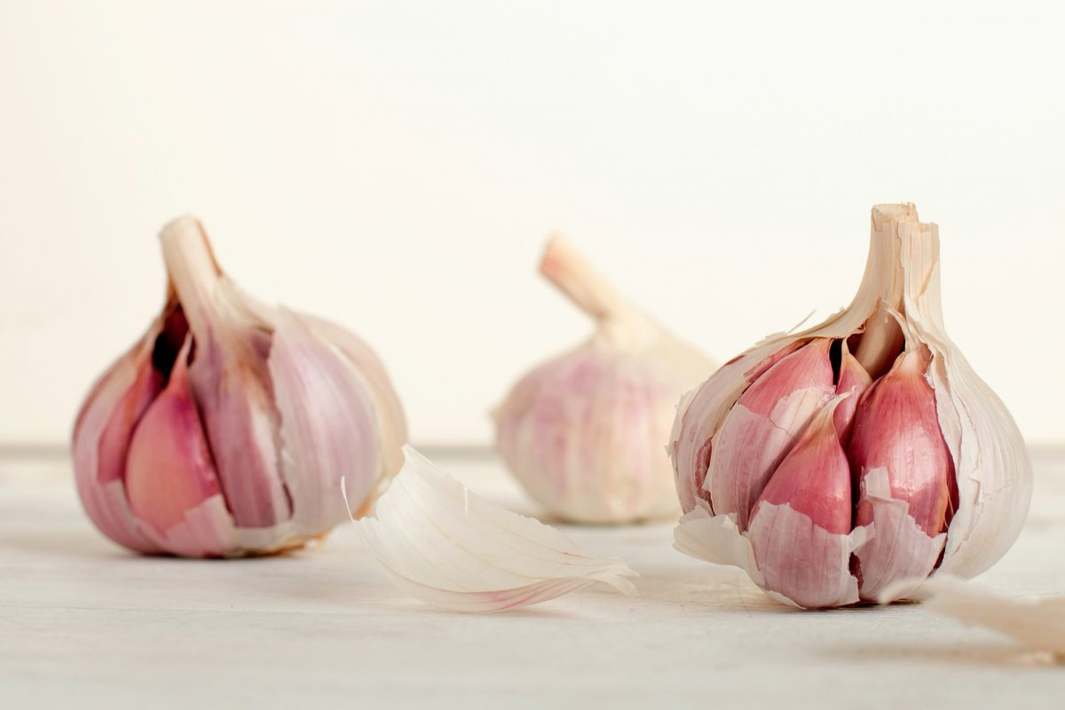 3 garlic heads on a counter against a white backdrop