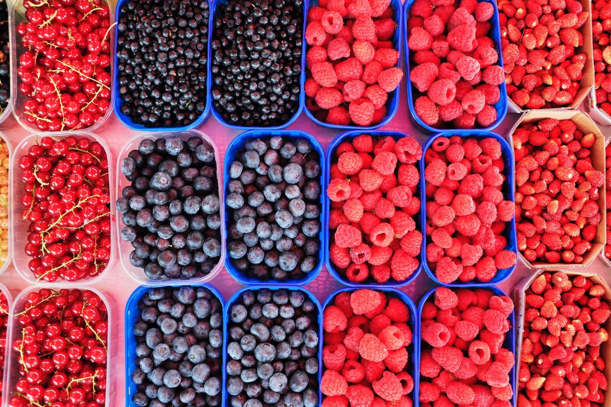 a bunch of mixed berries in trays
