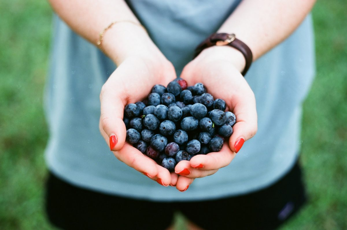 person holding blueberries in their cupped hands