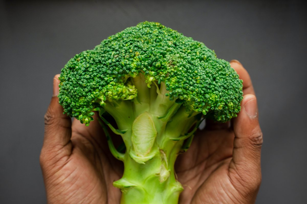 person holding broccoli floured in hands